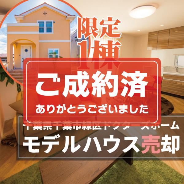 千葉県千葉市緑区 ドクターズホーム モデルハウス売却